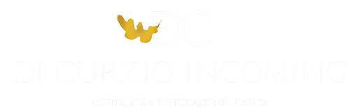Logo-DC-completo-bianco